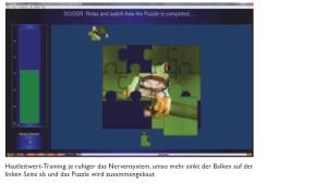 Biofeedback Puzzle SCL