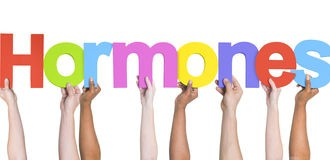 Hormon-Menopause